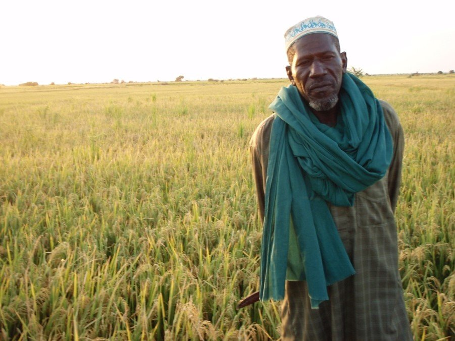 Mahamane Houssa in front of his SRI field